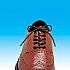 Elastic shoelaces Brown 45 cm Pack of 2 pairs Product Code 4612BR